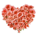 http://img.6waves.com/give-hearts/items/b/4e38af9f9453217eca4509766b0b44cd.png